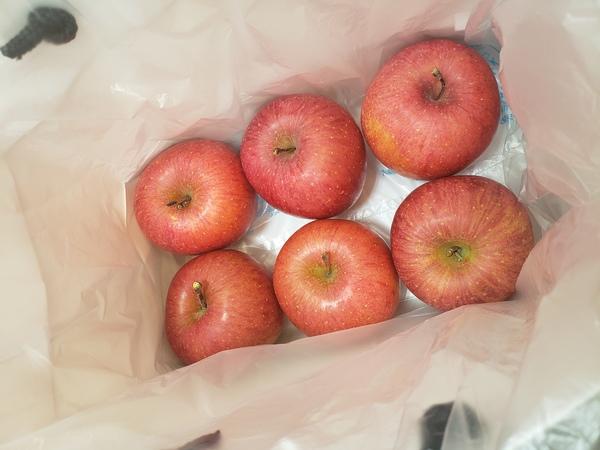 リンゴ頂きました♪